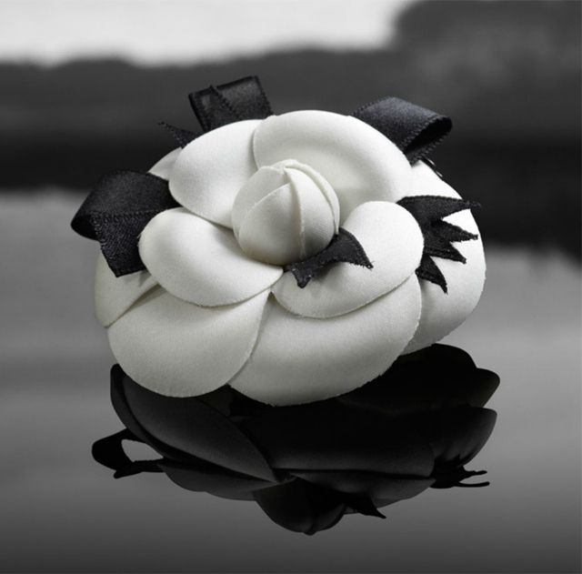 chanel camellia flower black and white by ...love Maegan, via Flickr