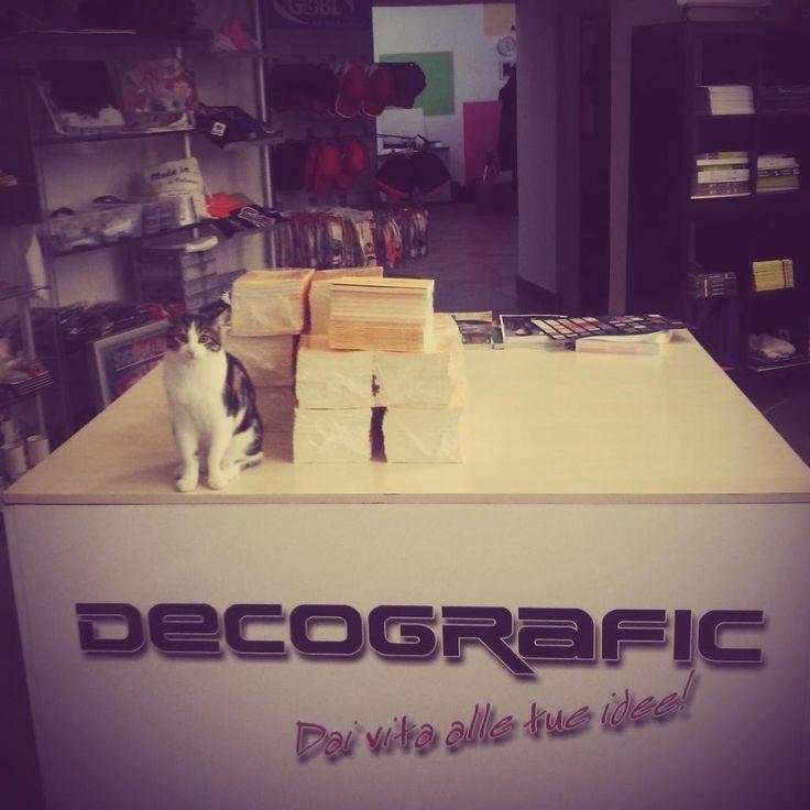 Una pila di libri freschi di stampa pronti per essere consegnati al cliente e un guardiano molto speciale. Tutto questo accade nella sede creativa di Decografic: passa a trovarci! www.decografic.com #Decografic #DecograficGenova #stampadigitale #tipografia #Genova #Savona