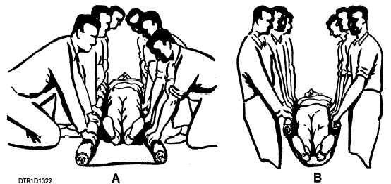 folded stretchers with straps - Αναζήτηση Google www.medical.tpub.com