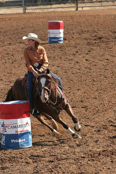 American horse athletes - Barrel Racing