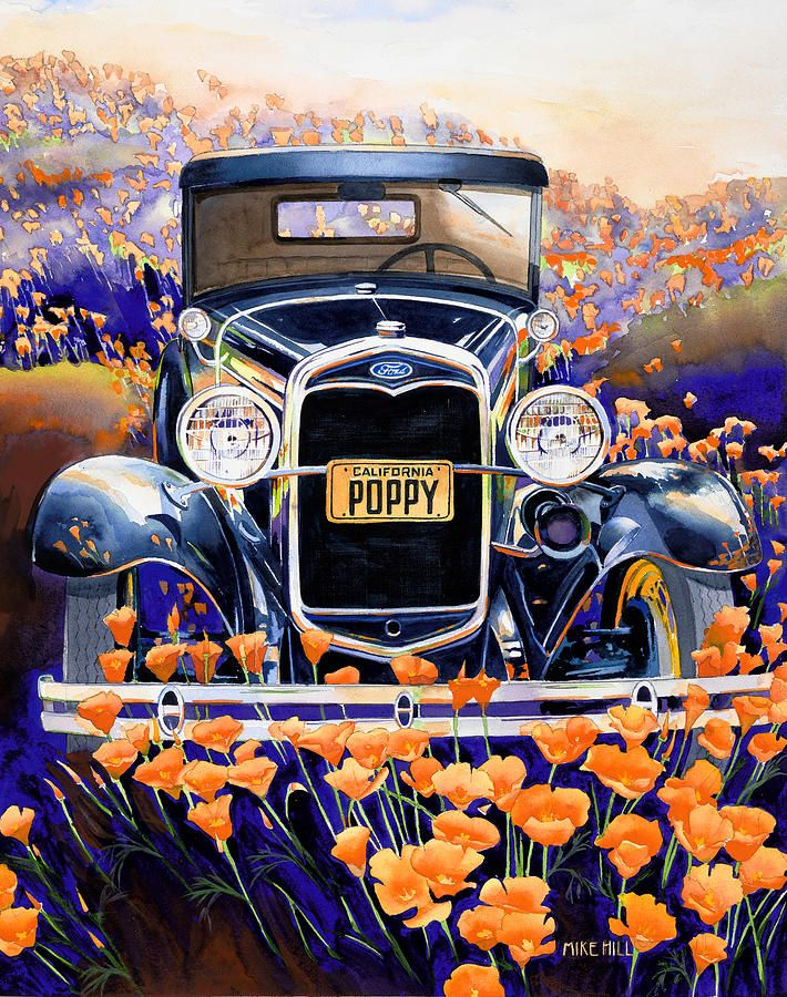 California Poppy Painting by Mike Hill - California Poppy Fine Art Prints and Posters for Sale