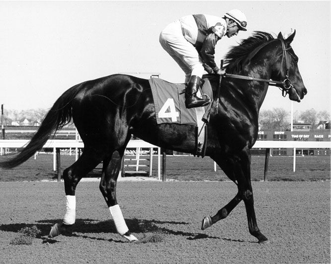 Ruffian, horrible ending to such a beautiful and talented life.