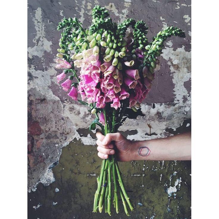 kwiaty&miut.