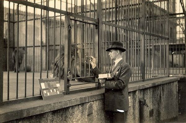 What It Was Like Working As A Sign Writer At The London Zoo In The 1930s