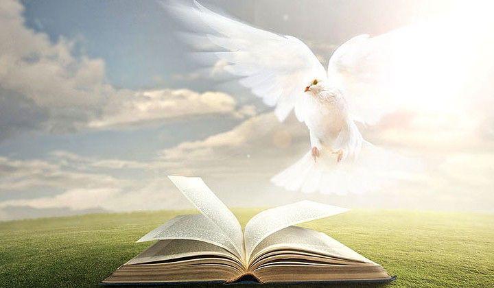 The beautiful Holy spirit