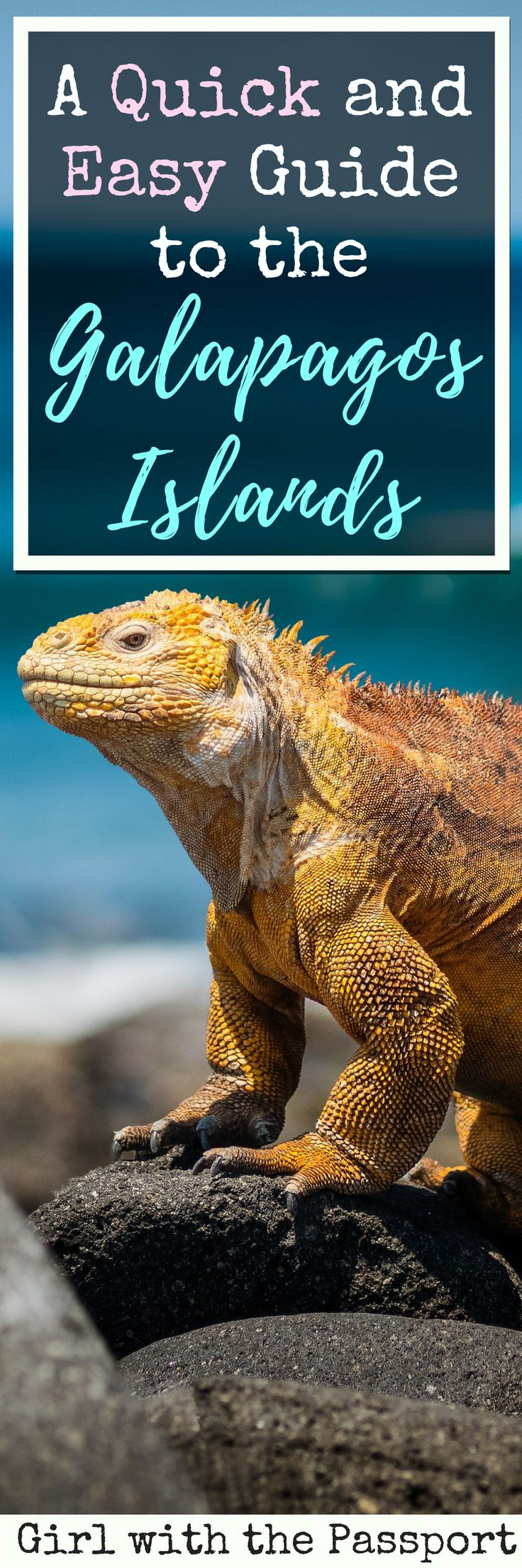 Trying to plan a cheap and easy vacation to the galapagos islands in ecuador? Then check out this budget guide, which will help you create the best Galapagos Islands itinerary ever. This way, you can tick a another site off of your ever growing bucketlist.