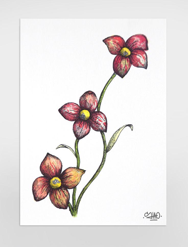 Flors. Flowers.  #ilustration #ilustracion #draw #dibujo #art #shaoarts #face