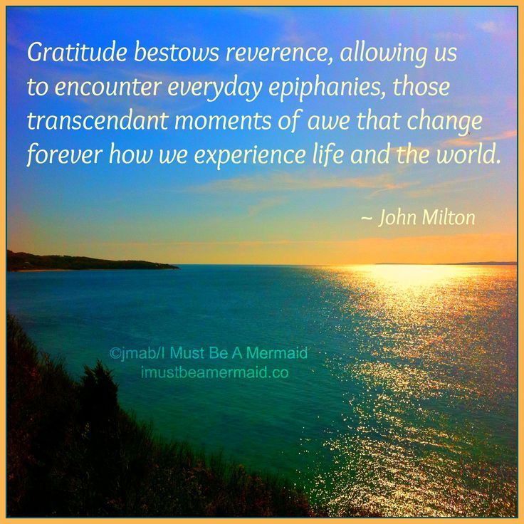 essays on gratitude i ve heard that is national gratitude