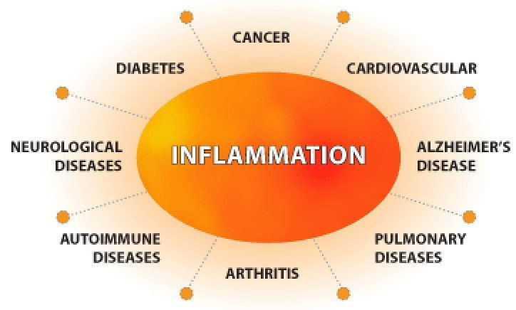 Do you suffer from #inflammation? Inflammation is the activation of the immune system in response to infection, irritation, or injury. Short term (acute) inflammation is useful for the body. Long-term (chronic) inflammation can cause other diseases. Some of them can be life threatening such as heart disease, diabetes, cancer and more. Excessive consumption of refined carbohydrate can lead to inflammation. #EMULIN can and will help you. order @ www.igalenhealthylifestyle.com