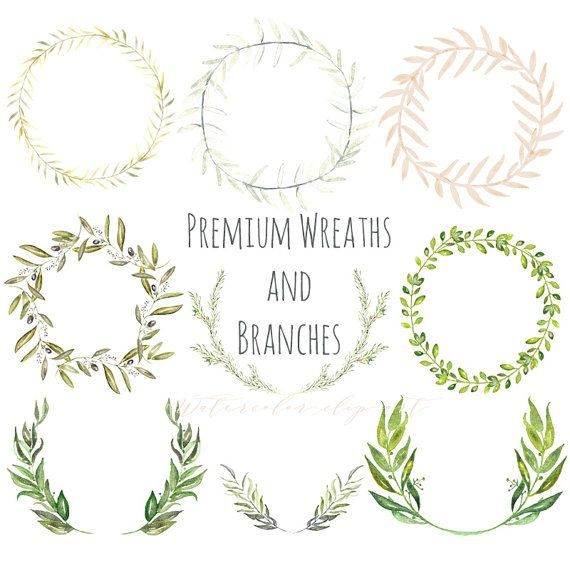 Premium wreaths and branches. Watercolor clip art hand drawn. Light green branches, wedding invitation, olives, rosemary, Laurel Wreath