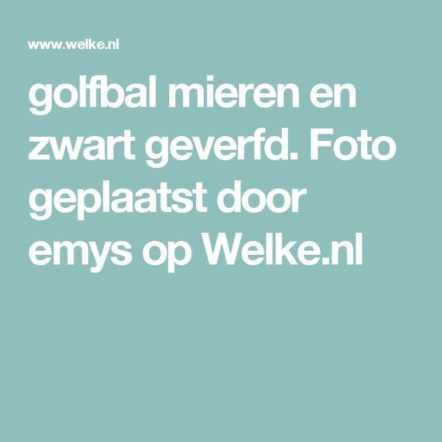 golfbal mieren en zwart geverfd. Foto geplaatst door emys op Welke.nl