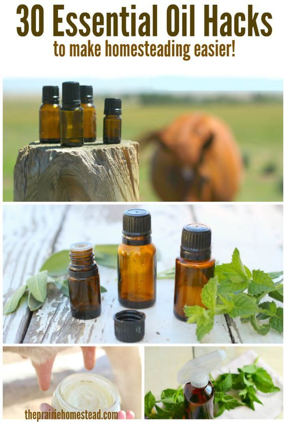 30 ways essential oils can make modern homesteading SO much easier-- I love this list of hacks. (It includes actual recipes & links, too, not just generic ideas.)