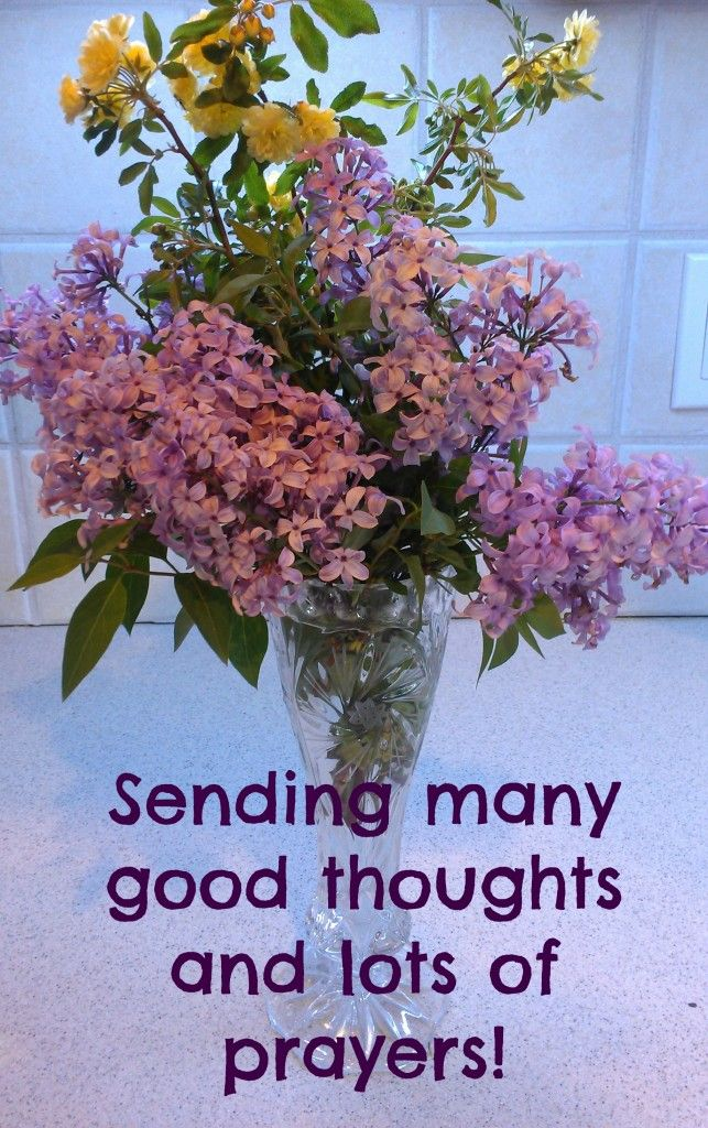 Please Participate And Send Virtual Flowers Lots Of Good Thoughts To Abigail