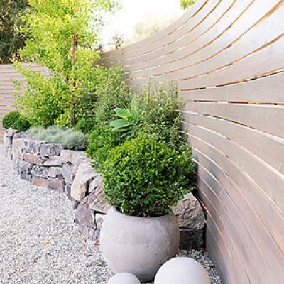 How to design a low water zen garden plantas y jard n - Plantas para jardin zen ...