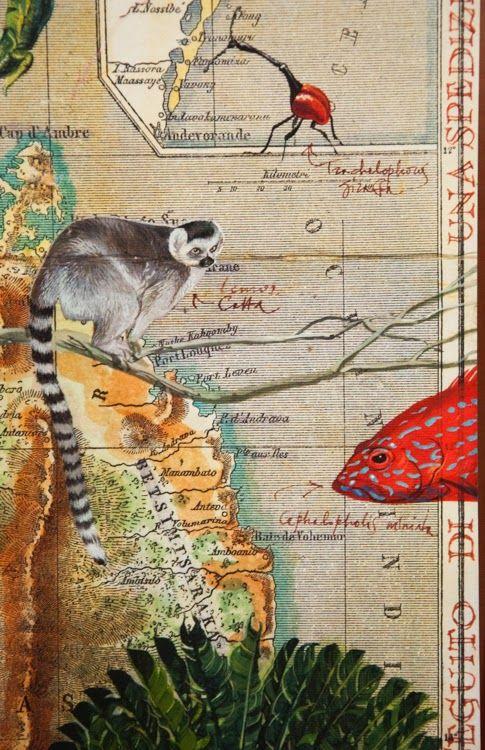 Stéphanie Ledoux - Carnets de voyage: Compte-rendu de Clermont Ferrand