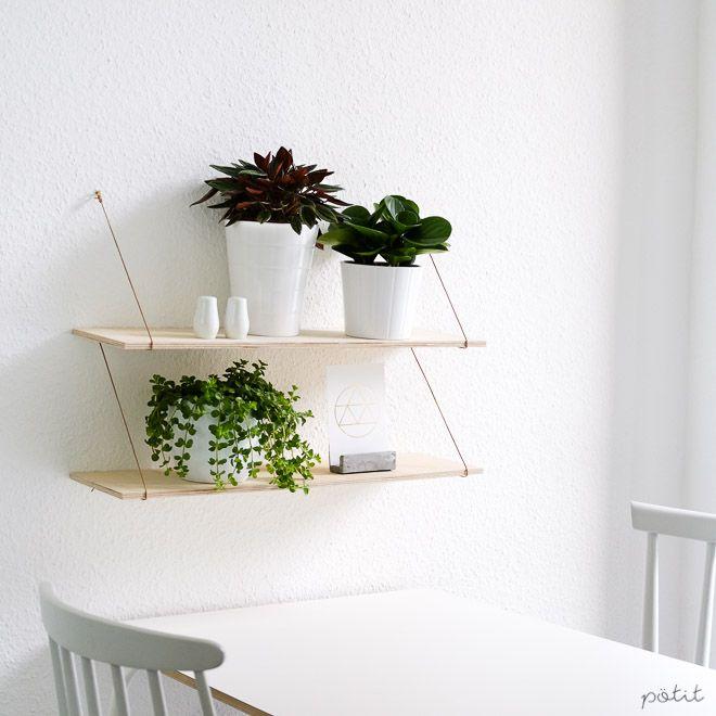 11 besten zwergpfeffer bilder auf pinterest zimmerpflanzen pflanzen und alles - Pfeffer zimmerpflanze ...