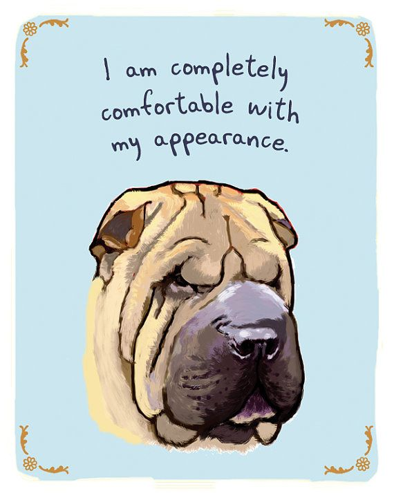 Shar Pei 5x7 Print with Phrase by tinyconfessions on Etsy
