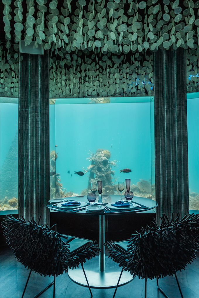 Coolest Restaurant In The World: Twenty Feet Below The Surface Of The Indian Ocean - Page 2 of 5