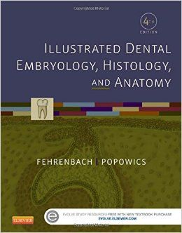 """""""Illustrated dental embryology, histology, and anatomy : 4th ed."""" / Margaret J. Fehrenbach, Tracy Popowics. St. Louis, Mo. : Elsevier/Saunders, cop. 2016. Matèries : Boca; Dents; Embriologia; Histologia; Anatomia. #nabibbell"""