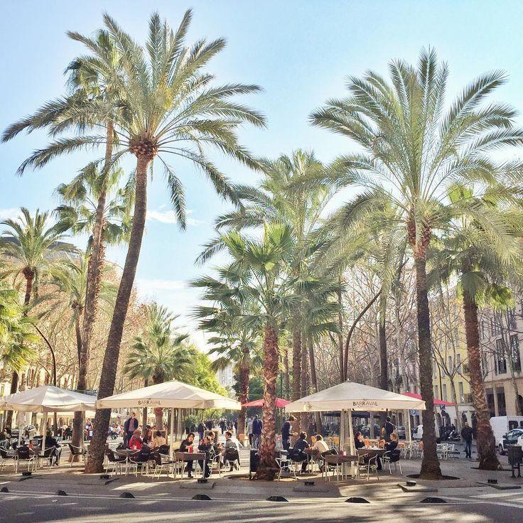 Rambla del Raval. #Barcelona #Raval