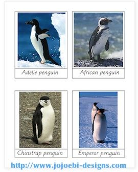 Penguin Activity Cards Kids- Kid World Citizen