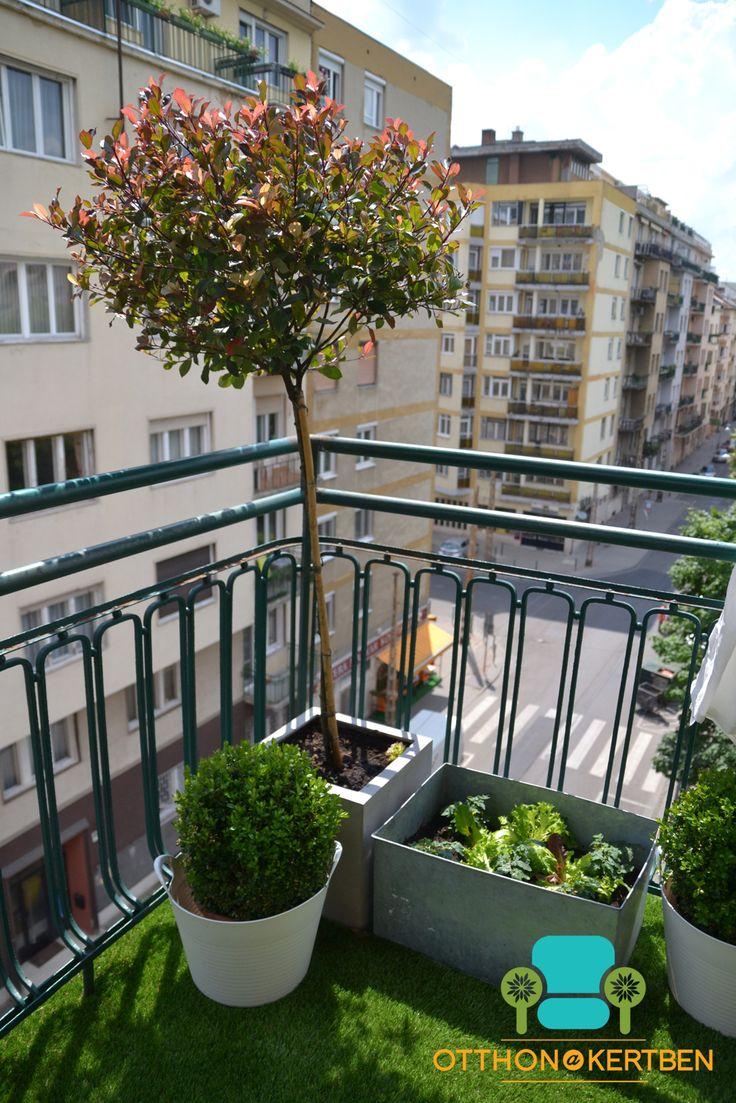 12 best szép balkonok balkonies ideas images on Pinterest