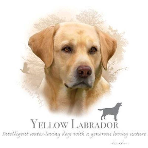Yellow Labrador Retriever Robinson Tote