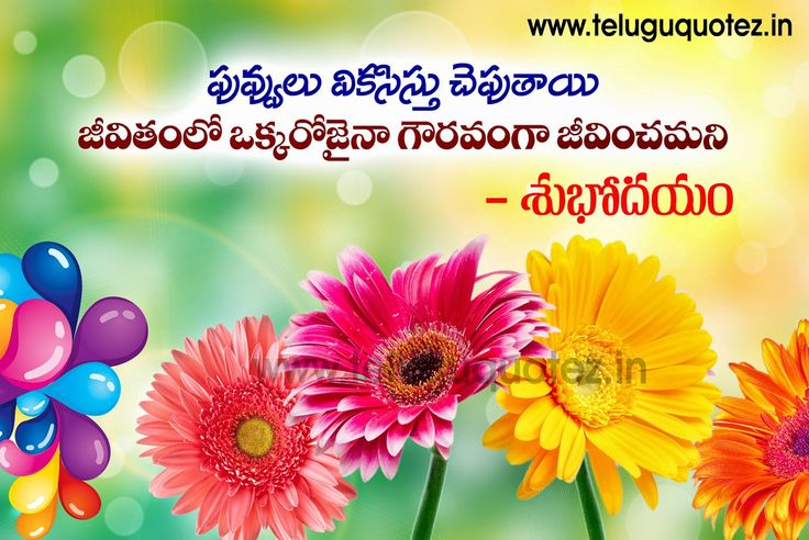 Good Morning Inspirational Telugu Quotes About Life Images Telugu