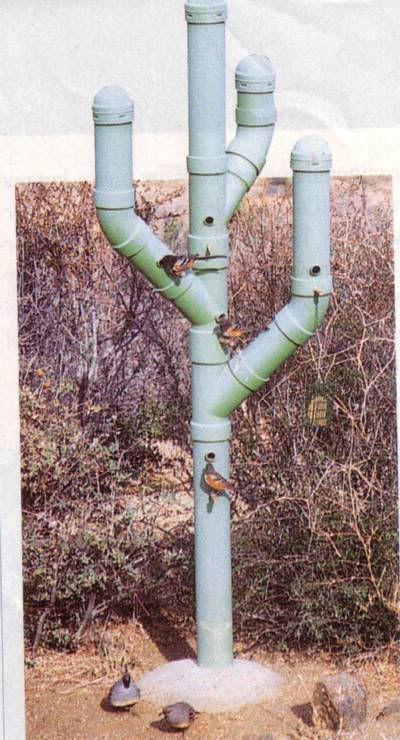 PVC pipe Cactus Bird house