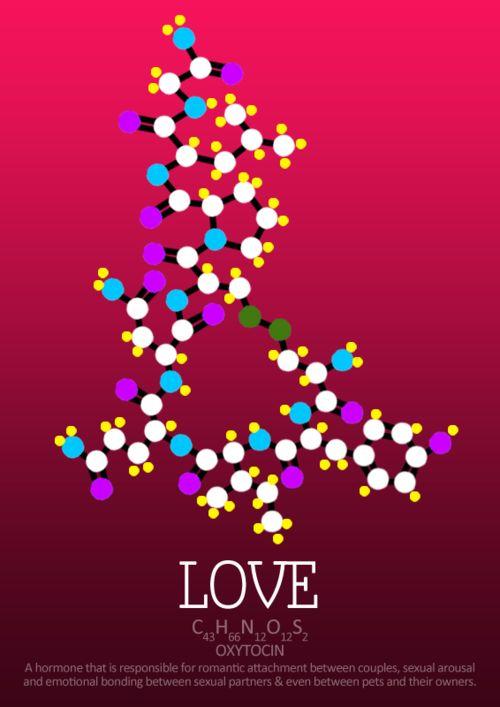 Amor: A ocitocina Um hormônio que é responsável pela ligação romântica entre os casais, excitação sexual e ligação emocional entre os parceiros sexuais e até mesmo entre animais de estimação e seus donos.