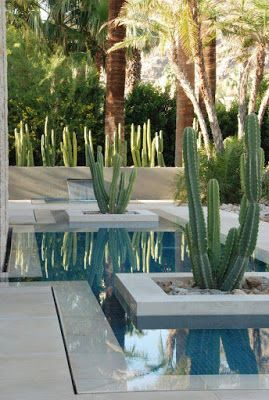 Cactus And Pond Landscape Design With Marble