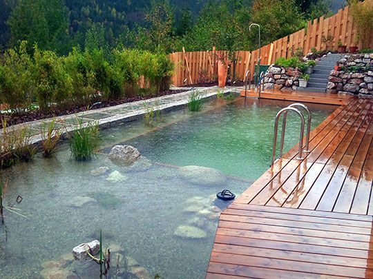 Best 10 Natural Pools Ideas On Pinterest Natural