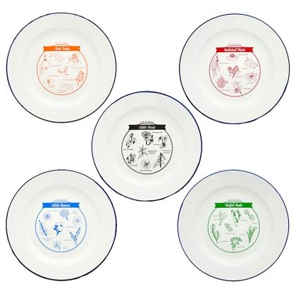 Pack of 5 ENAMEL Plates with different food to forage from nature