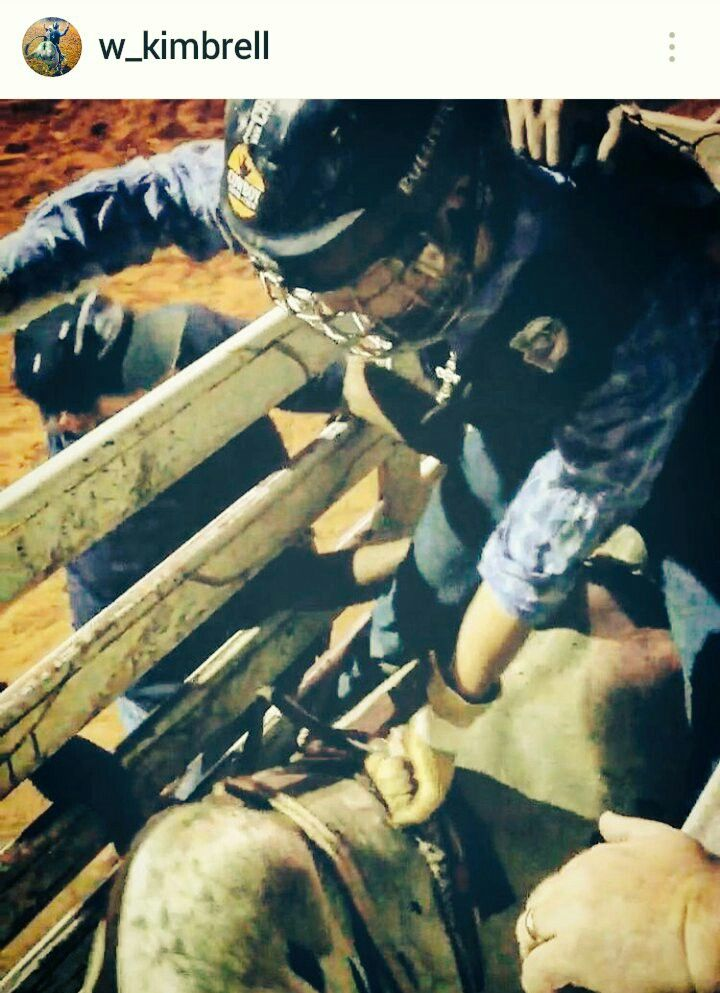 Rodeo Bull Riding Action Ready Chute Photo of Rider Will Kimbrell @w_kimbrell https://www.instagram.com/w_kimbrell/ Team Cowboy Coffee Chew #rodeo #cowboys #bullriding
