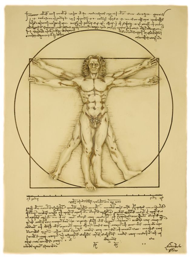 Vitruvian Man Wall Plaque Leonardo Da Vinci Circa 1487 Exclusive Vitruvian Man Leonardo Da Vinci Bow Art
