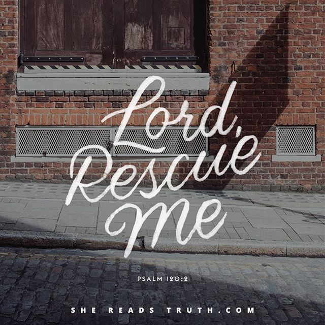 "WEBSTA @ shereadstruth - ""LORD, rescue me"" - Psalm 120:2Join us today for Day 1 of our new study, ""Songs for the Road: The Psalms of Ascent"" at SheReadsTruth.com or on the She Reads Truth app!"
