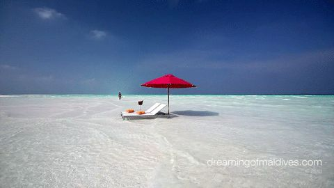 Walking Forever in Paradise. A Maldives Gif !
