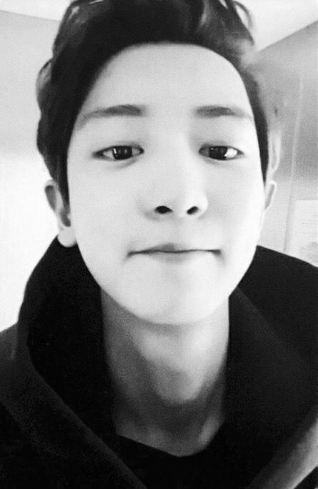 Chanyeol . Love. Cre: the owner/as logo