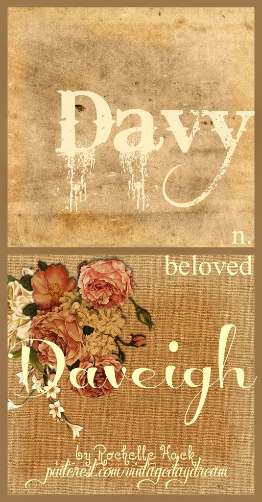 Baby Boy and Girl Name(s): Davy and Daveigh. Meaning: Beloved. Origin: Hebrew; English. https://www.pinterest.com/vintagedaydream/baby-names/