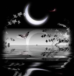 le croissant de lune avec son reflet