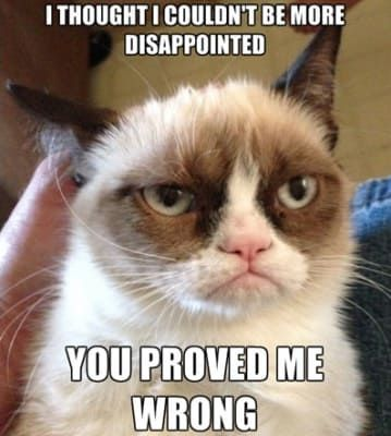 When your little sister tells you that she got into her dream school. - The 30 Best Grumpy Cat Memes You Can Respond to Emails With | Complex CA