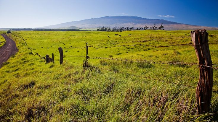 Hawaii Vacations: Save up to C$500 on Package Deals | Expedia.ca