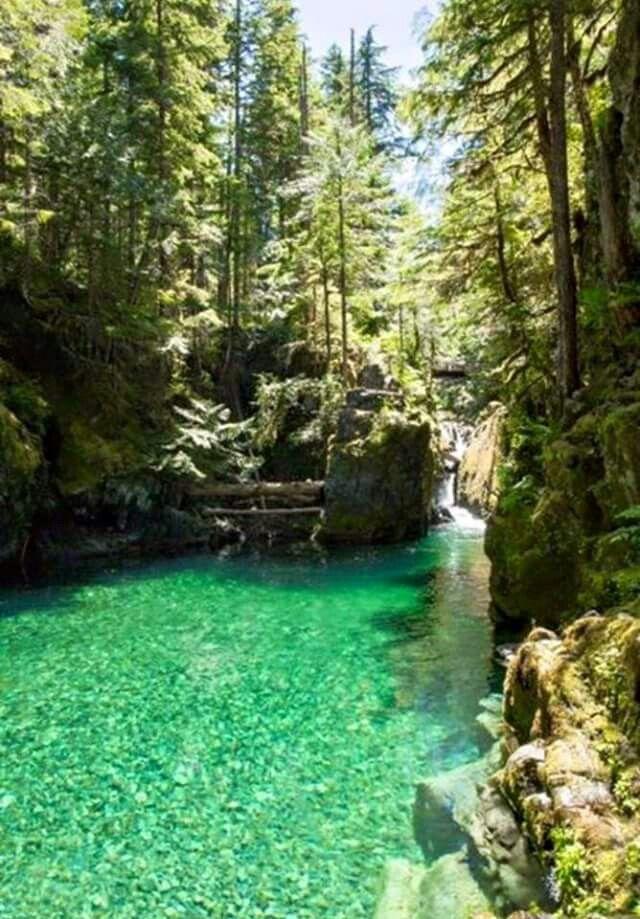 Oregon  opal creek