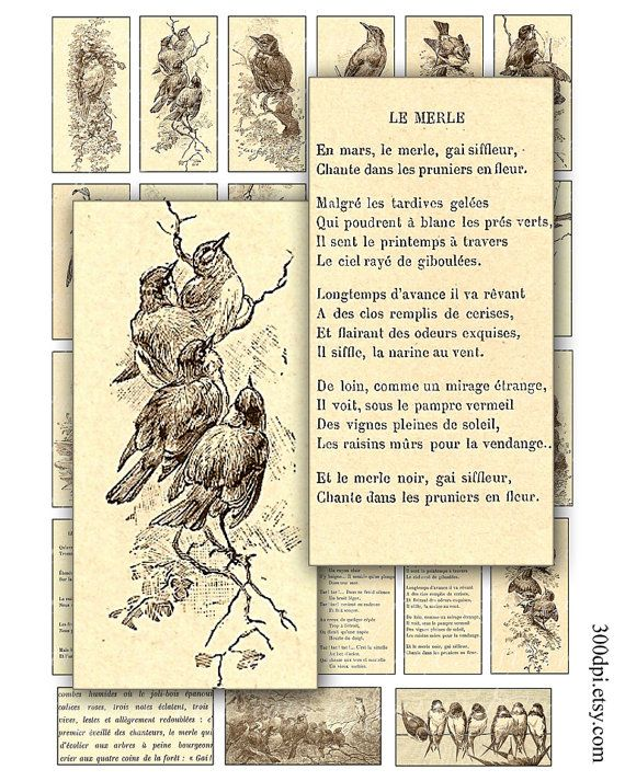 Vintage vogels 1 x 2 inch digitale Collage blad domino tegel