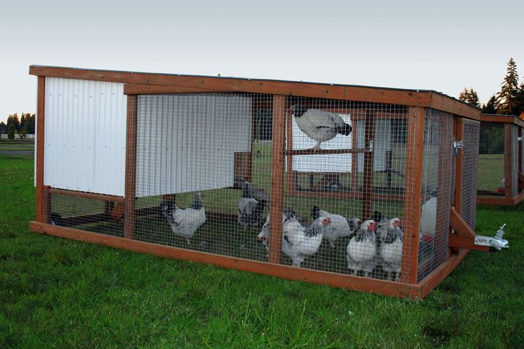 Chicken mobile shed plans amazon portable chicken coop for Mobile chicken coop plans