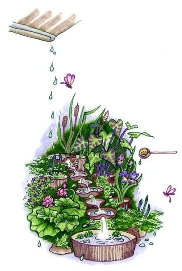 Recycle the rain through the use Permaculture techniques to create ponds