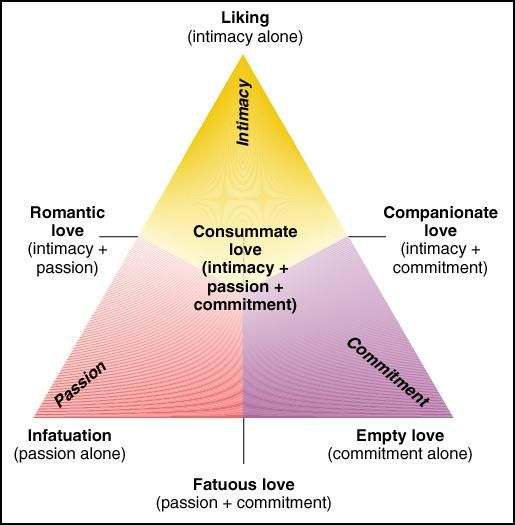 Triangular theory of love: Robert Sternberg's categorization of love relationships into three facets: passion, intimacy and commitment. When arranged at points of a triangle, their combinations describe all different kinds of adult love relationships.