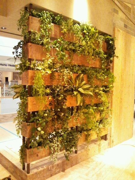 コンセプトグリーン concept green