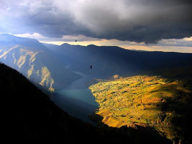 Tara Mountain, Serbia