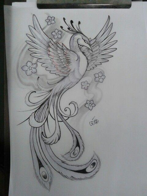 Fênix para tattoo - Léo Tattoo
